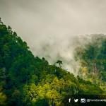 Unesco declara biosfera a la montaña de Celaque
