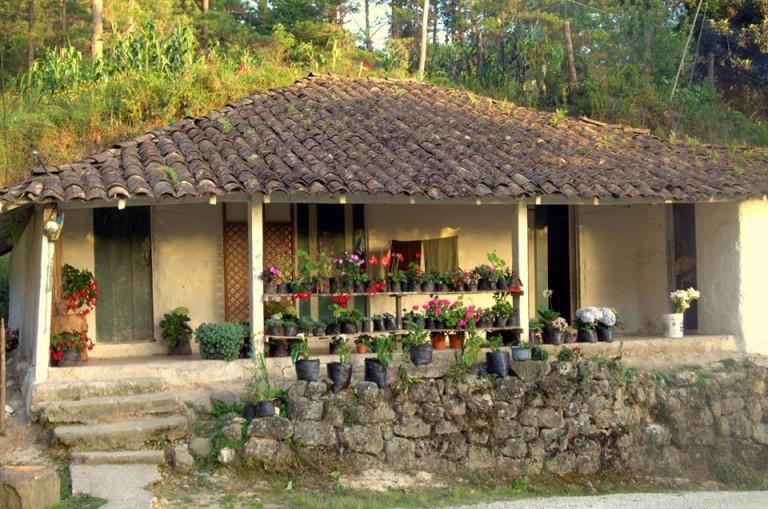 Una de las casas tradicionales ubicadas en las faldas de La Tigra, sus habitantes aún viven conectados a la naturaleza.