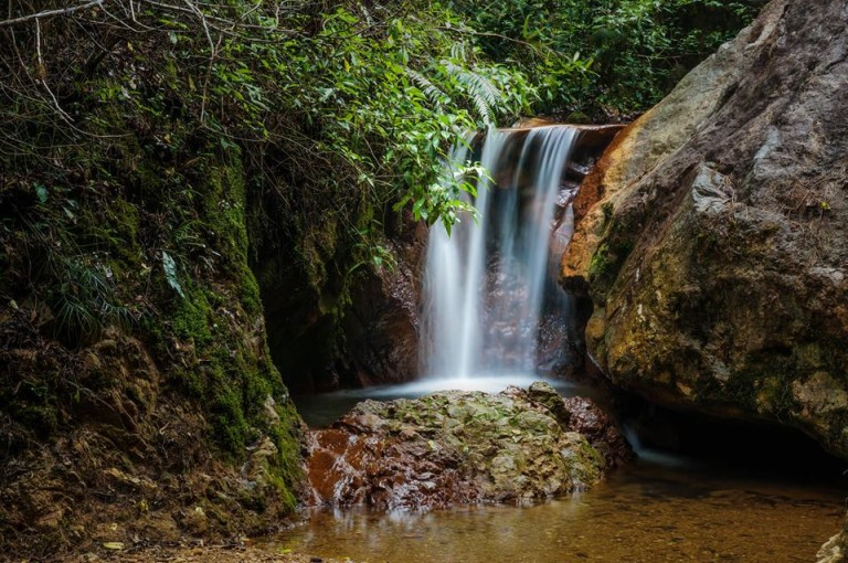 Desde La Tigra se abastece de agua a Tegucigalpa y alrededor. (Foto: Hiroki Kibe)