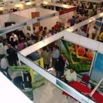 San Pedro Sula será el principal centro de convenciones de Centroamérica en 2016