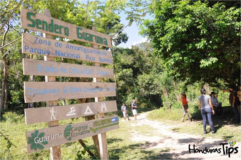 El Sendero Guaruma se encuentra en la zona de amortiguamiento del Parque Nacional Pico Bonito.