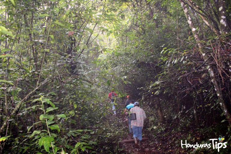 El senderismo es una de las actividades que seguramente le llamará la atención en Olanchito.