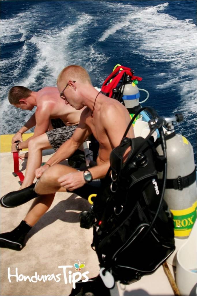 En Utila podrá obtener desde el certificado básico de buceo hasta  el de instructor de buceo, a un precio muy bajo y con mucha seguridad. La isla es famosa mundialmente por esta característica.