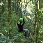 El recorrido lleno de aventura del canopy La Tigra está conformado por 7 cables.