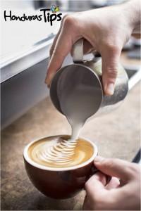 Un barista es el profesional especializado en la preparación de café de alta calidad.