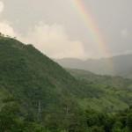 Declaran como refugio silvestre la montaña de Mico Quemado