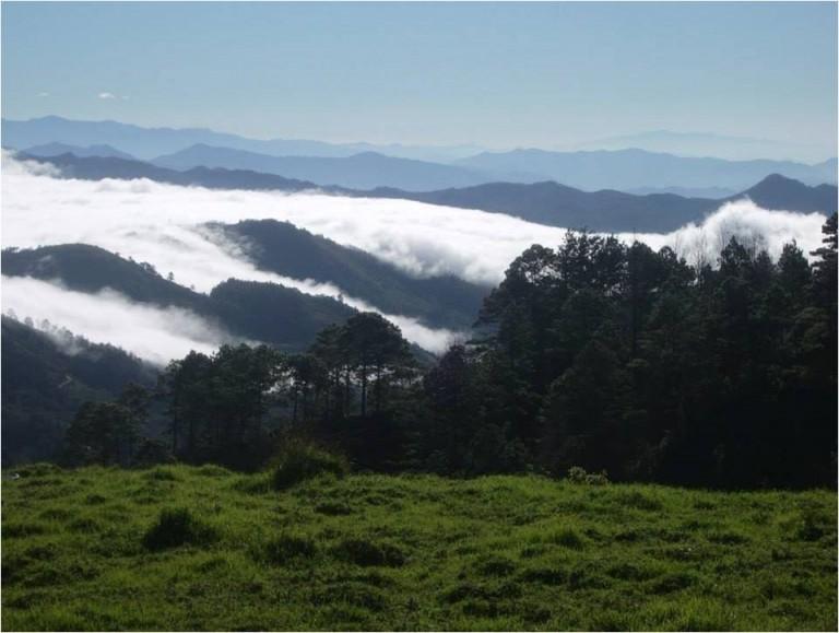 La Reserva Biológica El Güisayote es un área protegida de Ocotepeque.