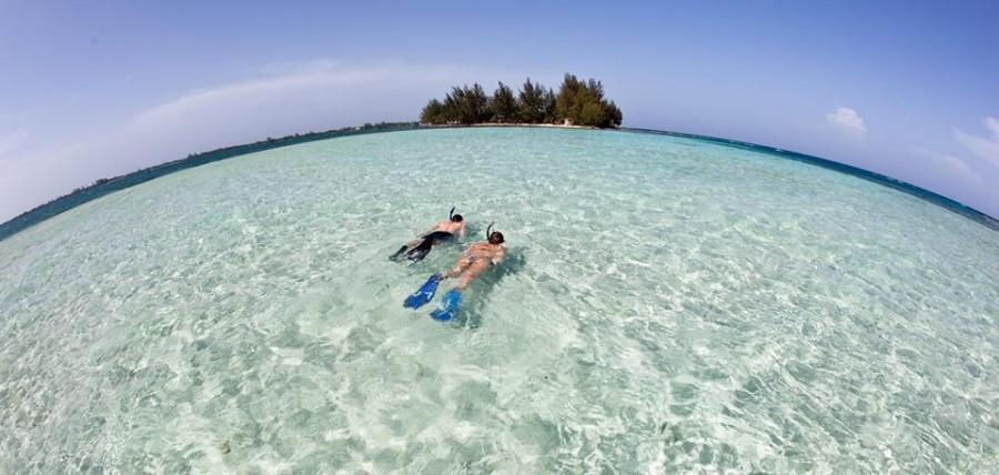 Utila es un paraíso para el buceo.