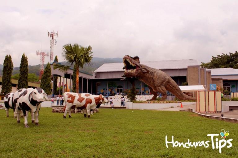 Un nuevo integrante es la sensación en el Museo del Niño en San Pedro Sula.