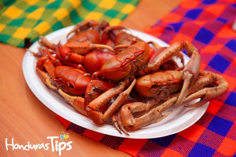 En el Festival del Canecho se puede disfrutar de ricos platillos de este molusco.