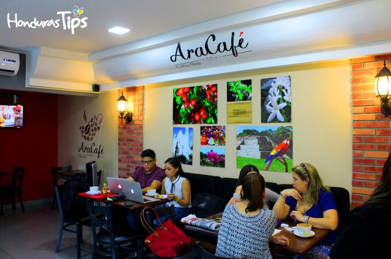 Ara café tiene uno de los café de mayor altura en San Pedro Sula.