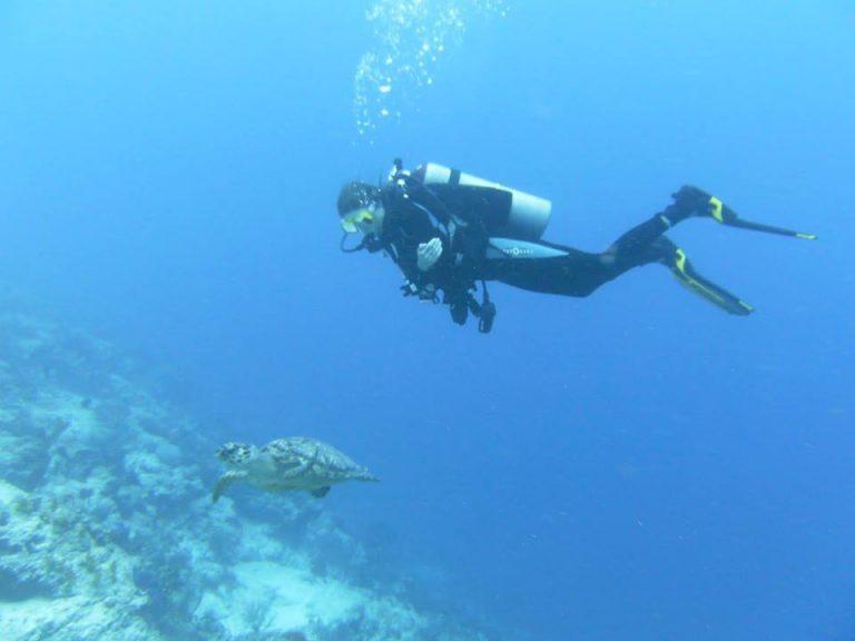 Admirar los arrecifes más sanos del Caribe es posible si bucea en Guanaja.