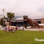 Lugares hondureños para disfrutar como niños