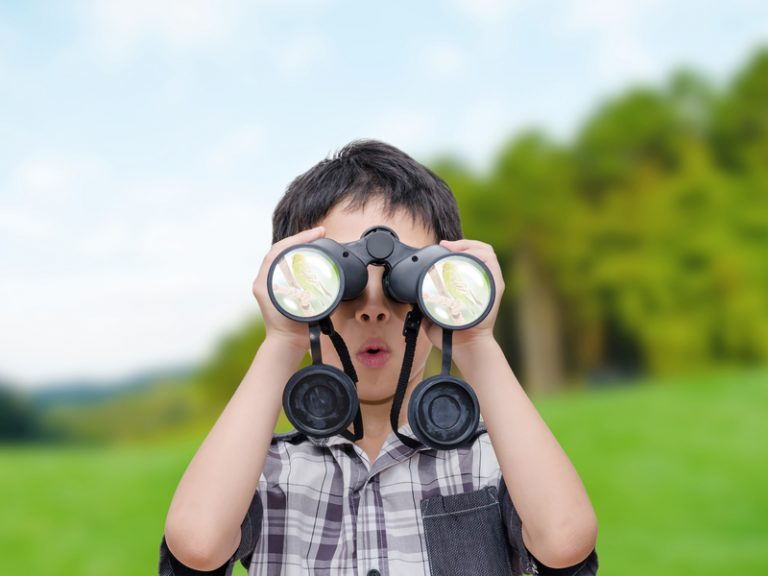 boy looking birds by binoculars
