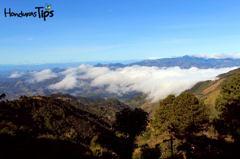 Desde el Cerro el Pital puede verse comunidades de El Salvador, Honduras y con cielo despejado hasta de Guatemala. Una experiencia única.
