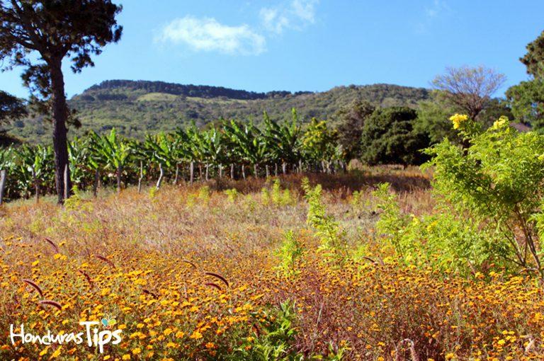 Los paisajes de Ipala son perfectos para ser grabados en una fotografía o video.