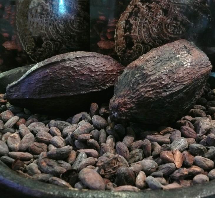 El café hondureño está considerado entre los mejores 5 del mundo, y el cacao entre los mejores 40.