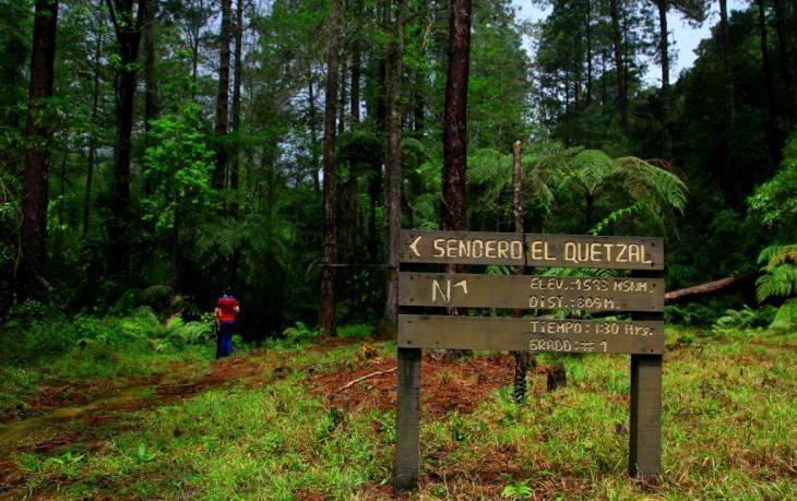 Honduras cuenta con al menos unos 20 parques nacionales y reservas naturales.
