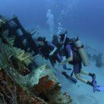 Nominan a Utila como mejor destino del Caribe para hacer buceo