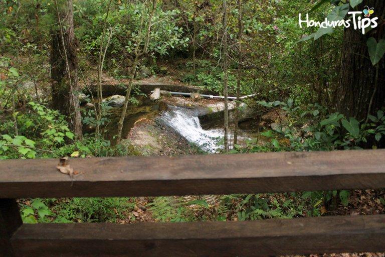 Celaque es una montaña con abundante agua.