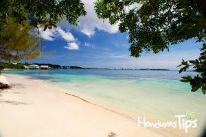 >Playa de Utila recibe importante galardón por parte de la Bandera Azul Ecológica
