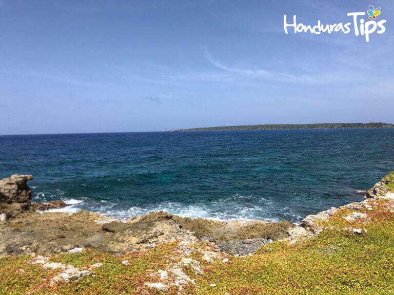 En Las Islas del Cisne se pueden avistar los singulares pájaros bobos.