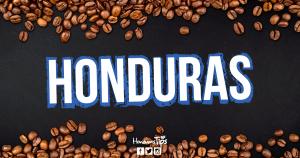 Café hondureño supera récord mundial en subasta electrónica