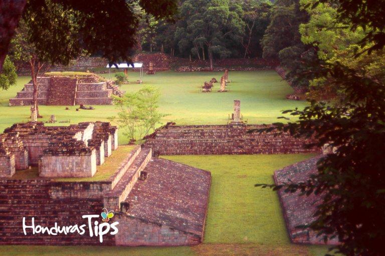 The Ball Court at Mayan Copan Archeological Ruins Copan Ruinas Honduras below large Ceiba Tree