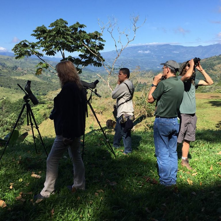Foto: Beaks and Peaks Birding and Adventure Tours