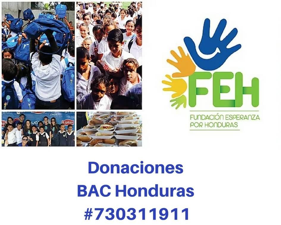 FEH Donaciones