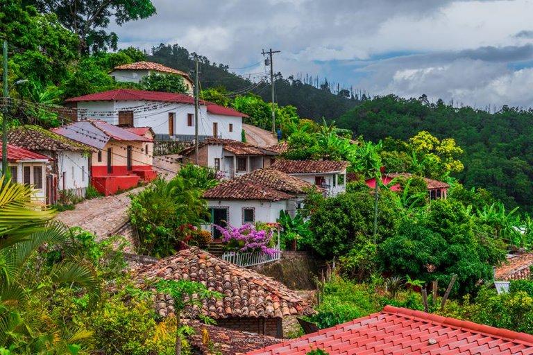 Hermosas casas de Cedros.