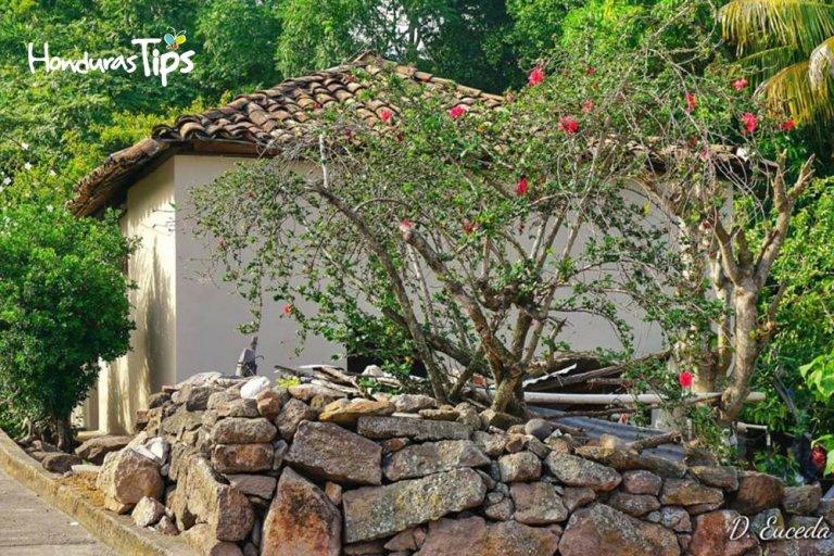 Casas San Vicente.