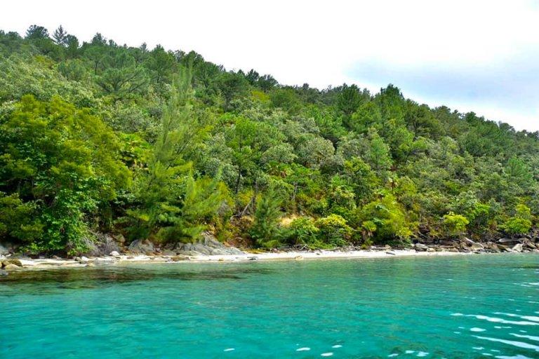 Las áreas vírgenes de la Isla Verde lo sorprenderán.