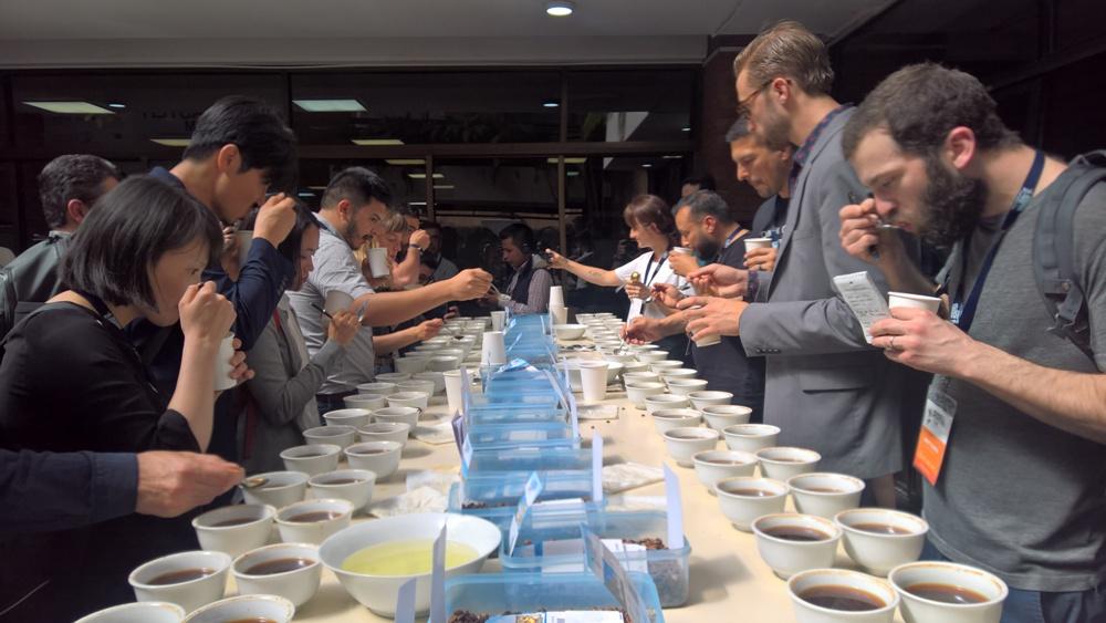 Foro de productores y tostadores de café