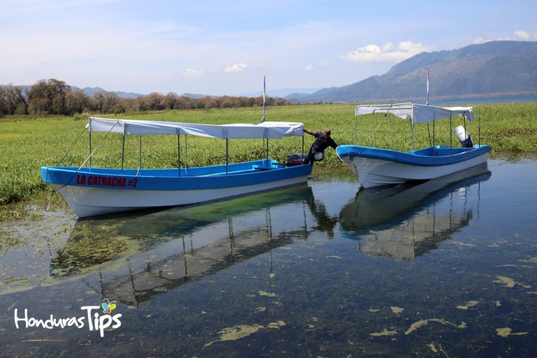 lago de yojoa lancha2