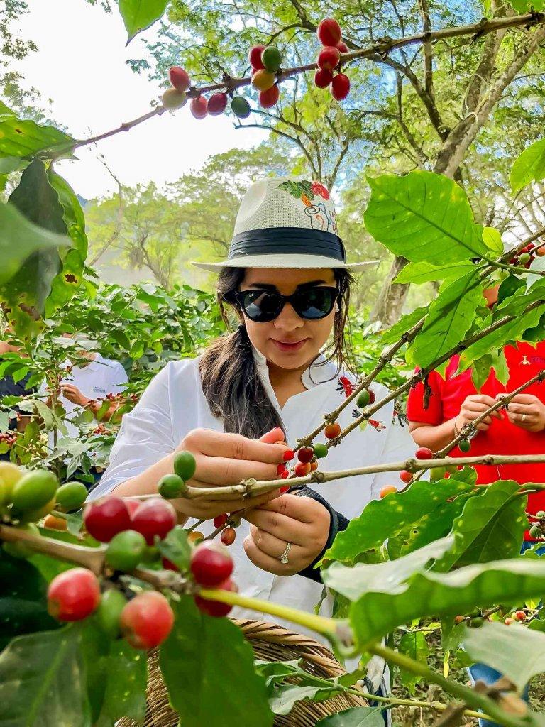 En Honduras, hay muchos destinos y actividades que le encantará conocer.